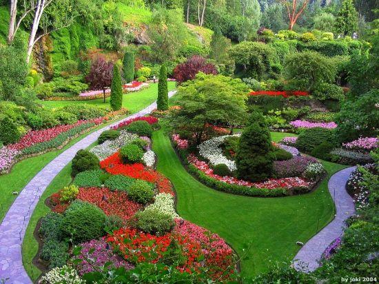 garden550x412