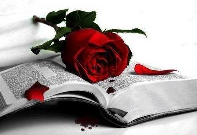 Vivimos Entre Rosas Y Espinas