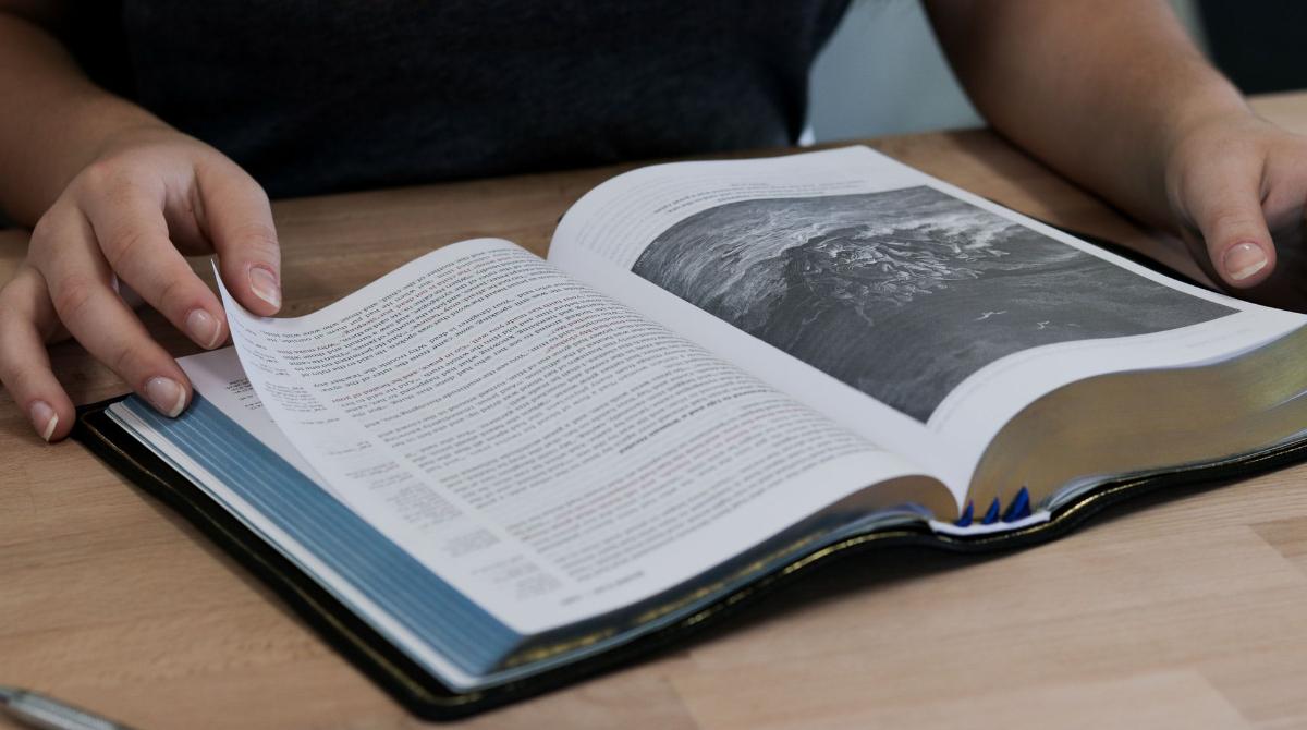 Cómo estudiar un libro de la Biblia