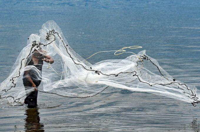 ¿Estás echando tus redes en alta mar?