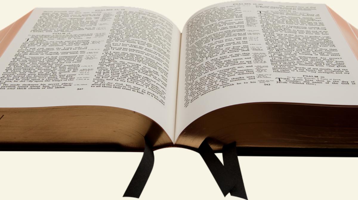 ¿La Biblia contiene depuración étnica?