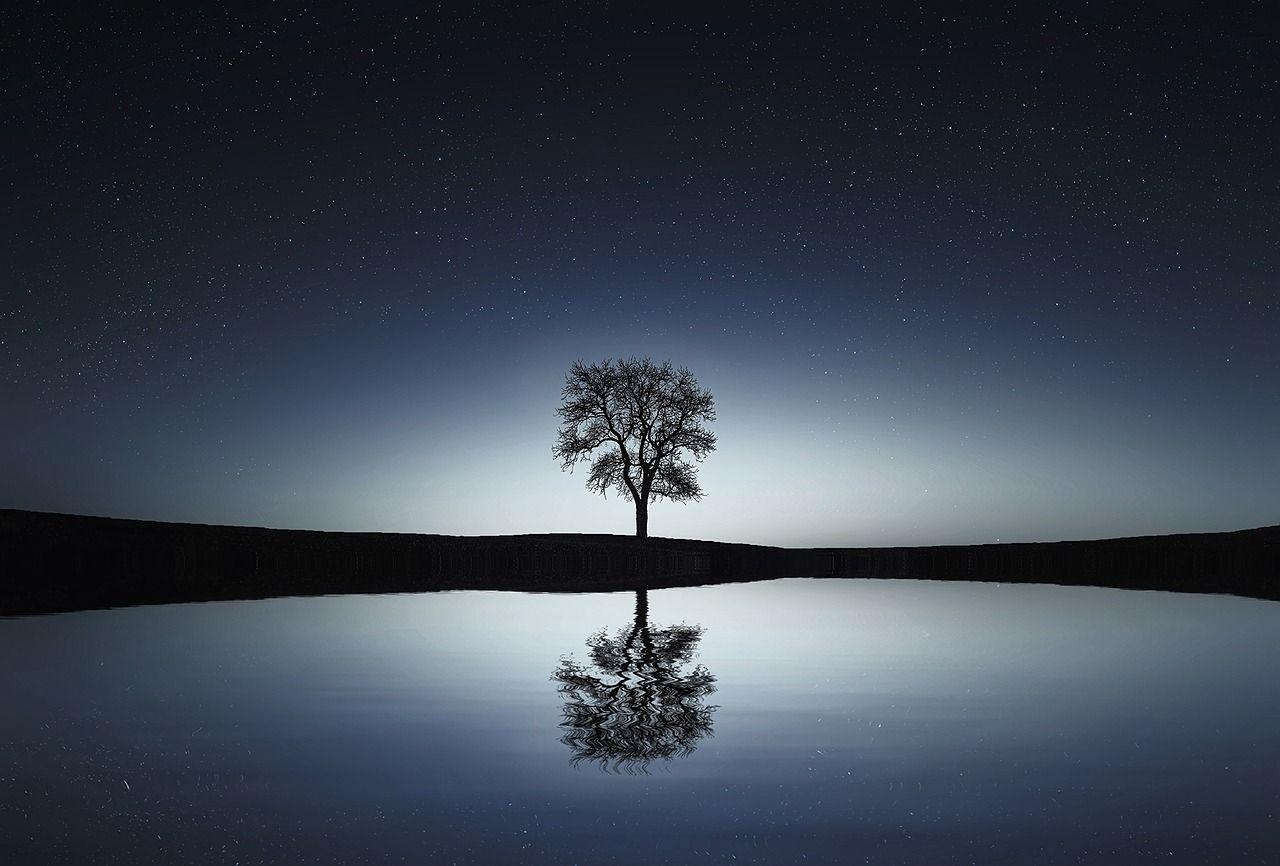 No se desespere… No pierda la calma