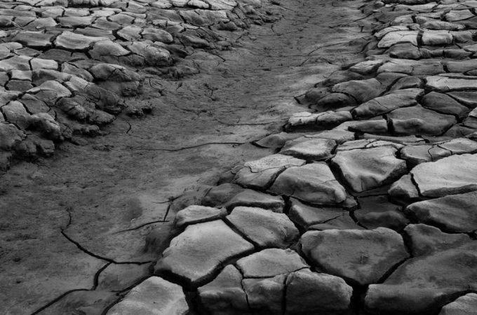 Cuando el arroyo se seca